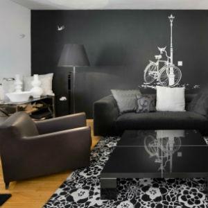czarne ściany w mieszkaniu, fot.: Elad Goen Photography