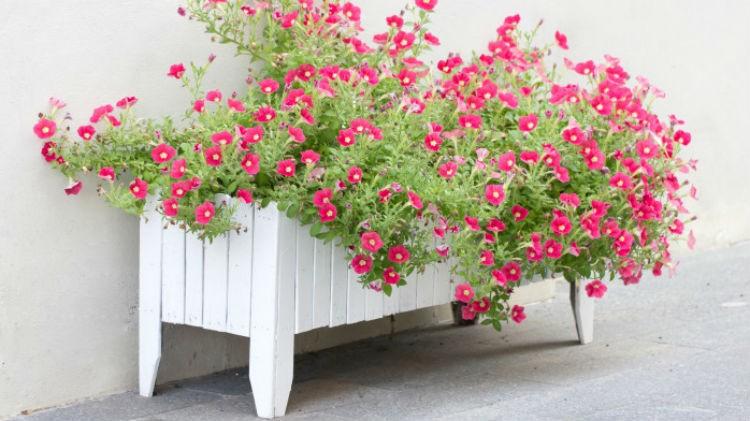 Drewniana Donica Na Kwiaty Do Ogrodu Lub Na Balkon Portal