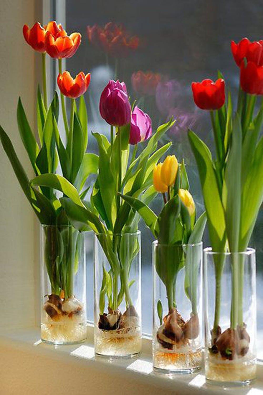 wiosenne-dekoracje-wnetrza2